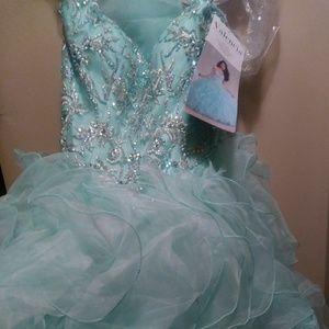 Quinceañera gown